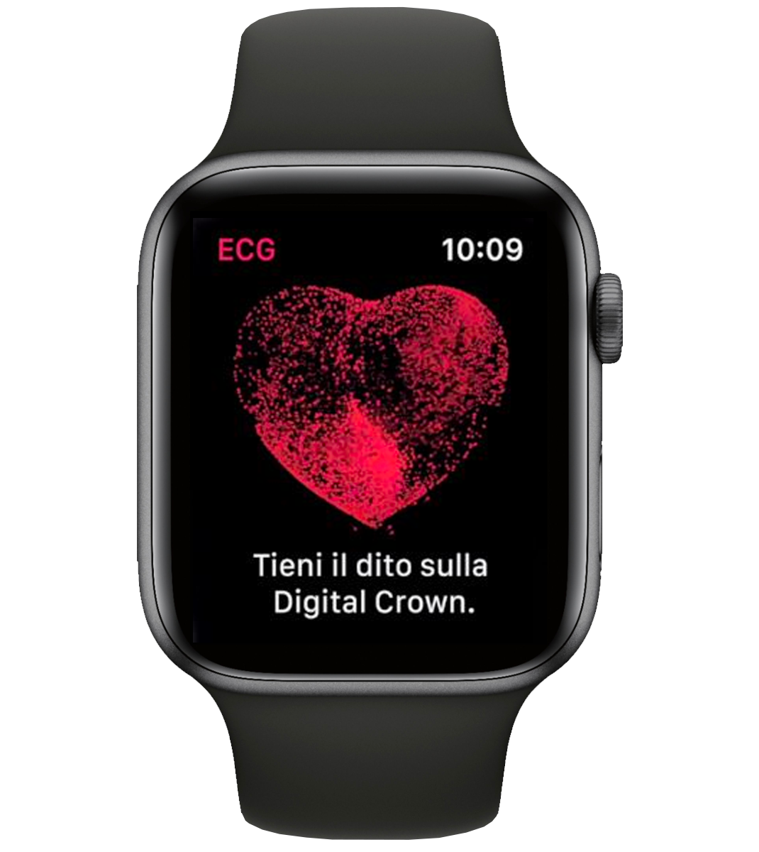 ECG Apple Watch iimagine cuore